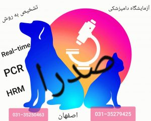 20191027_010327_45019c00d89f739ea0d3e81bc978fe5d