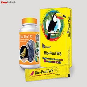 پروبیوتیک پرندگان زینتی(پروبیوتیک مخصوص قناری)(Bio-Poul WS(Ornamental Birds